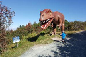 ein-highlight_der-tyrannosaurus-rex-am-wegesrand
