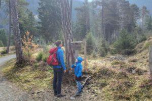 Ein Walderlebnispfad sorgt für Spannung auch bei den Kleinen.