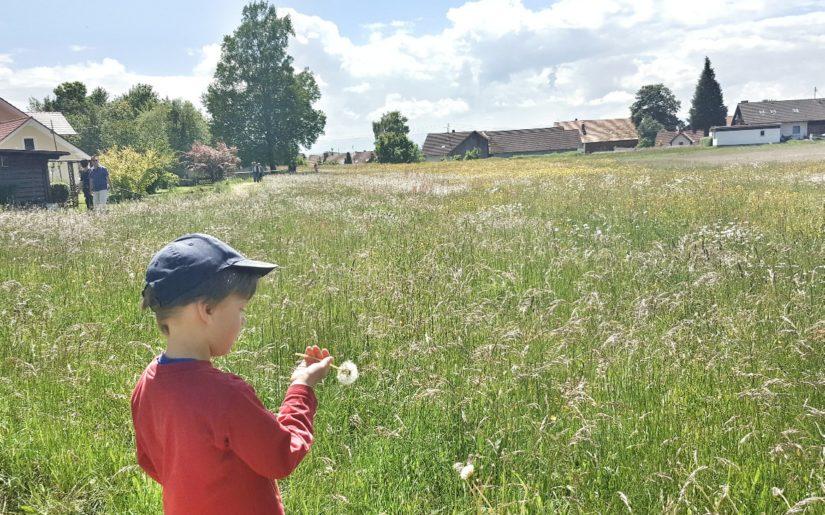 Mühlenweg in Schwabsoien. Eine idyllische Familienwanderung