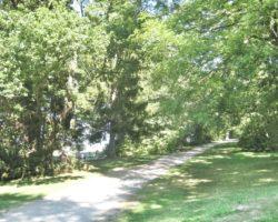 Schattige Wege machen auch einen Spaziergang mit Kinderwagen im Sommer möglich.