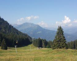 Toller Blick ins Tal von der Seealpe am Nebelhorn.