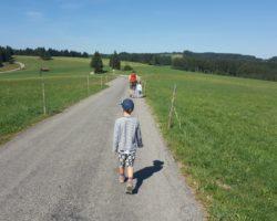 Der rund 4 km lange Rundweg ist für den Kinderwagen und kleinere Kinder geeignet.