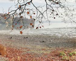 Traumhafte Ausblicke auf den Bodensee.