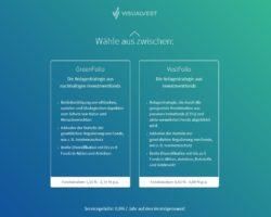 Anlagestategie auswählen_mit Vest4Later von VisualVest_4