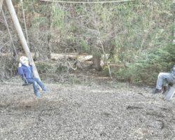 Alles in Bewegung beim Moorerlebnispfad Stötten am Auerberg