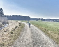 Eine tolle Aussicht beim Moorerlebnispfad Stötten am Auerberg