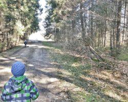 Kinderwagenfreundliche Wege am Moorerlebnispfad Stötten am Auerberg
