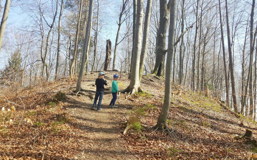Burgwaldlehrpfad Dießen