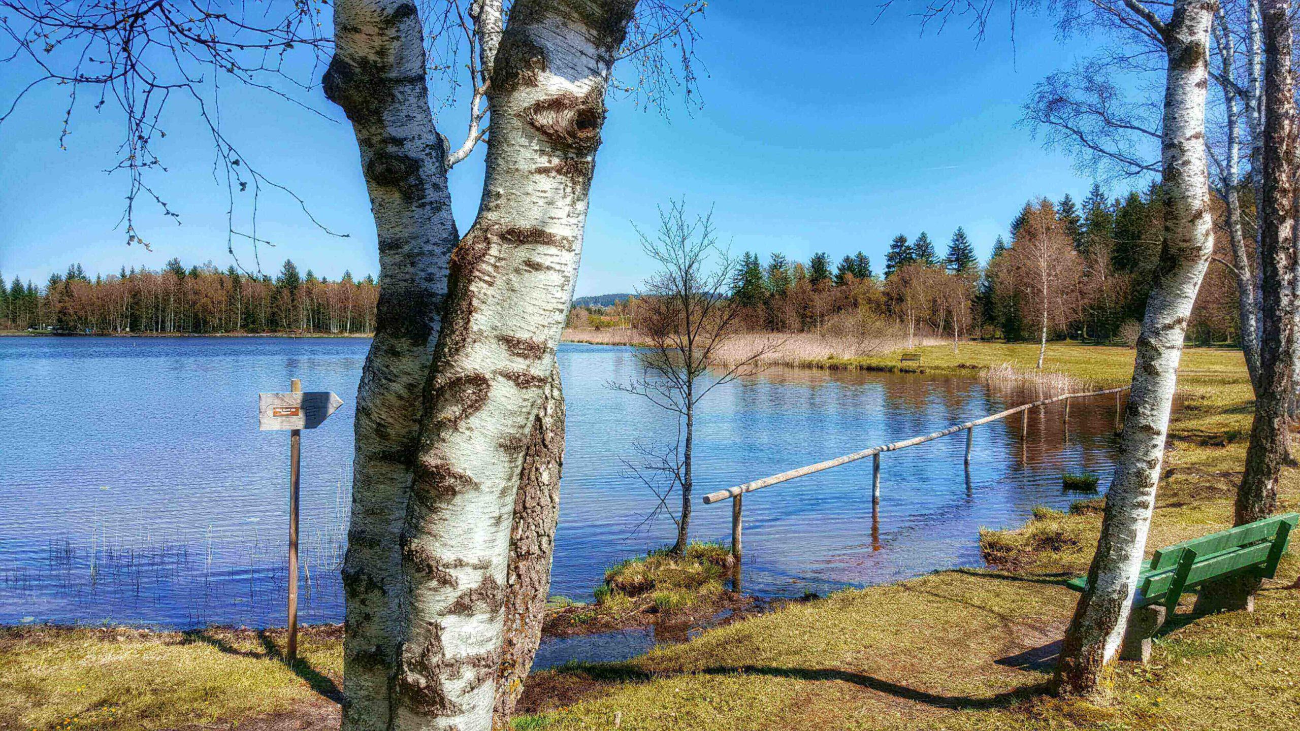 Barfußpfad Soier See