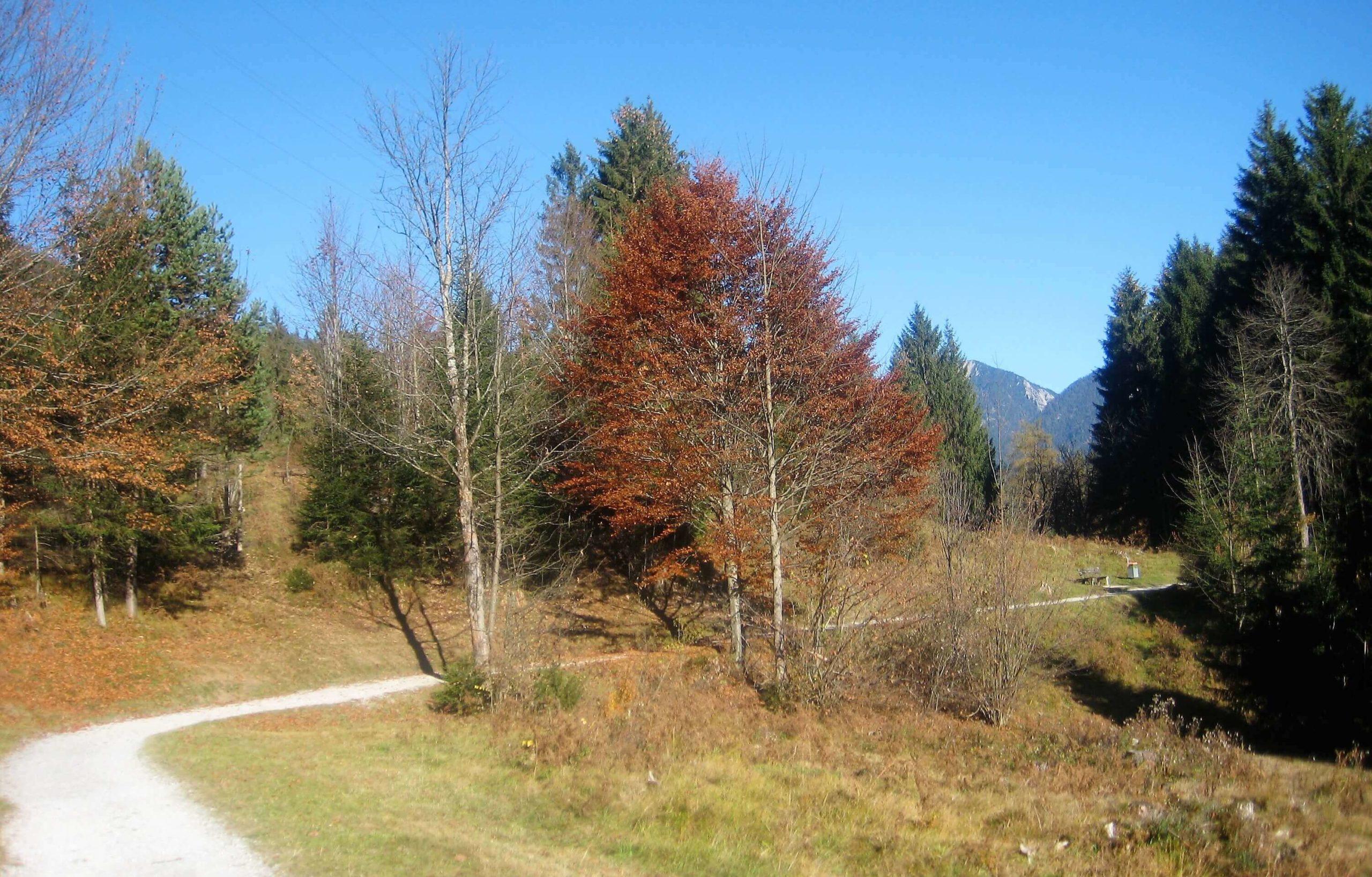 Kramerplateau-Weg