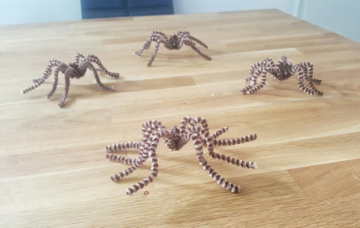 Spinnen aus Pfeifenputzern.